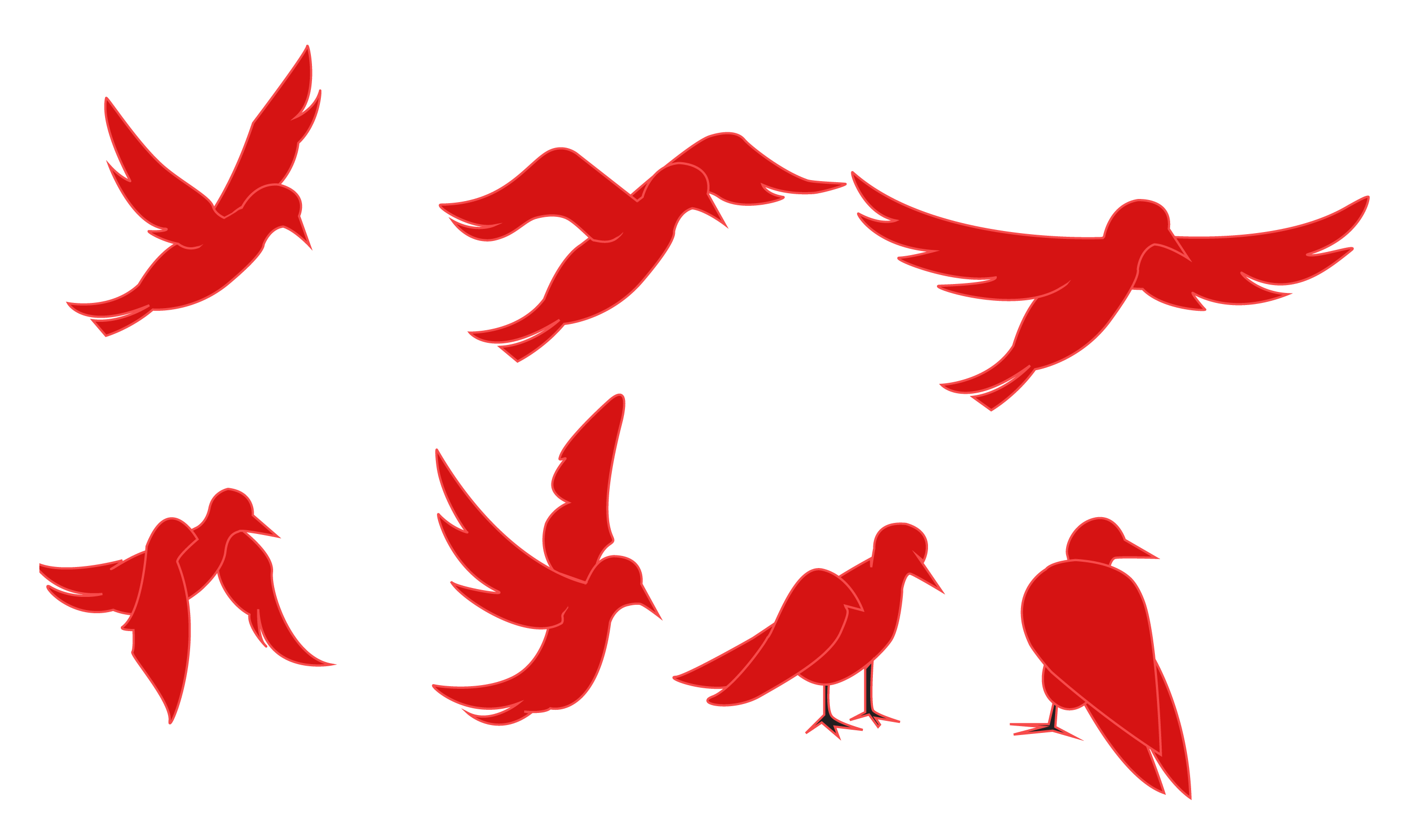 Adobe Edge Preview - Creating an Animated Bird